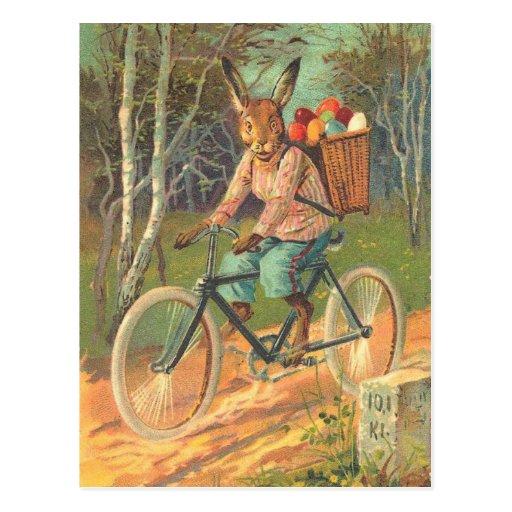 Kaninchen auf seinem Fahrrad, das Eier liefert! Postkarte