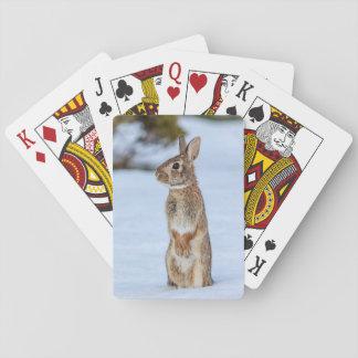 Kaninchen im Schnee Spielkarten