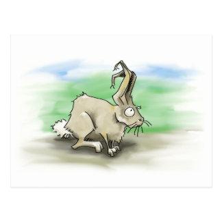 Kaninchen-Postkarte Postkarte