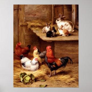 Kaninchenhahnhennehaustier-Viehhäschen Poster
