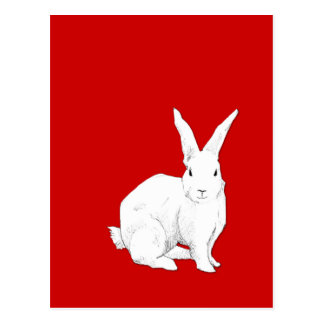 Kaninchenrot Postkarte