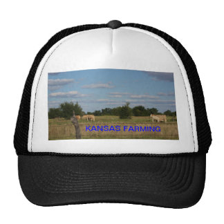 KANSAS, das BEWIRTSCHAFTET, den Hut (der Kuh) Baseballkappen