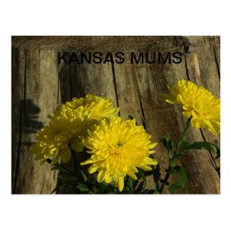 Kansas-MAMAS schossen nahes oben durch einen Postkarte
