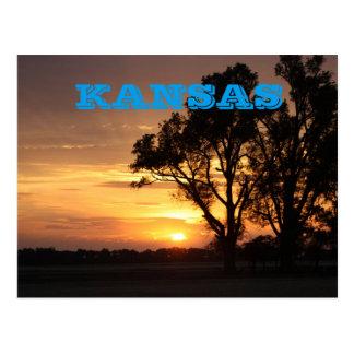Kansas-Sonnenuntergang mit Baum Silhouette, Postkarte
