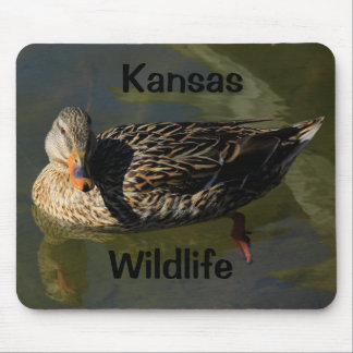 Kansas-Tier-Mausunterlage!! Mousepad