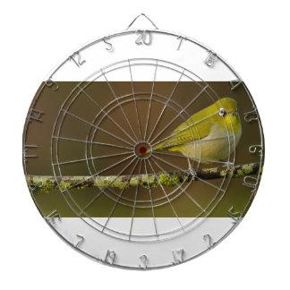 Kap Weiß-Auge Vogel gehockt Dartscheibe