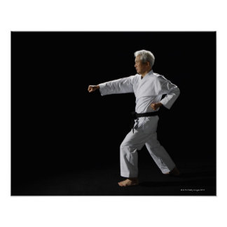 KarateVorlagendemonstrieren, Studioschuß Poster