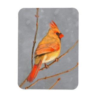 Kardinal auf Niederlassung Magnet
