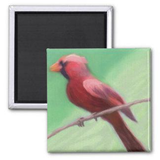 Kardinal gehockt quadratischer magnet