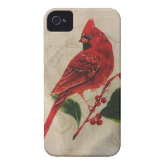 Kardinal in der Stechpalme Bush iPhone 4 Case-Mate Hülle