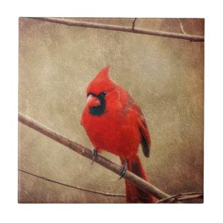 Kardinal Keramikfliese