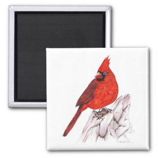 Kardinal Quadratischer Magnet