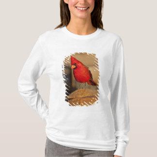 Kardinal, Richmondena cardinalis, südöstlich T-Shirt