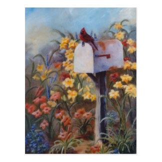 Kardinal wartete die Post Postkarte