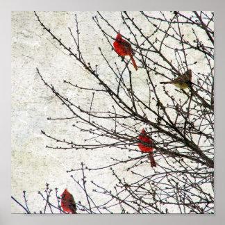 Kardinäle in einem BaumGrunge Poster
