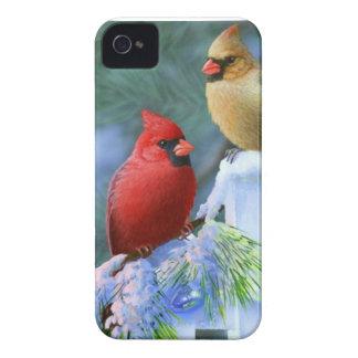 Kardinäle und Weihnachtslichter iPhone 4 Cover