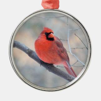 Kardinals-Nebenfluss-Gewohnheits-Verzierung Rundes Silberfarbenes Ornament