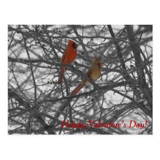 Kardinals-Postkarte des Valentines Tages Postkarte