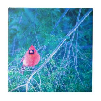 Kardinals-Regel! Keramikfliese