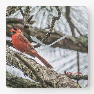 Kardinals-Wand-Uhr Quadratische Wanduhr