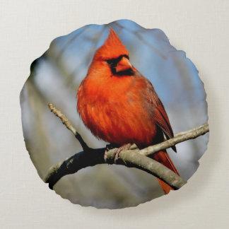 Kardinals-Wappen-rundes Kissen