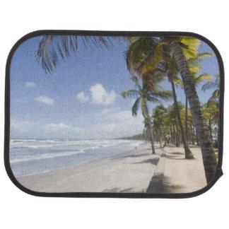 Karibischer - Trinidad- - Manzanilla-Strand an Automatte