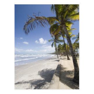 Karibischer - Trinidad- - Manzanilla-Strand an Postkarte