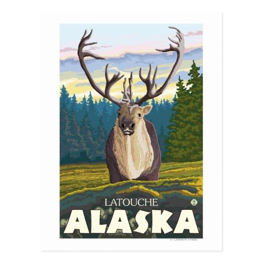 Karibu im wilden - Latouche, Alaska Postkarte