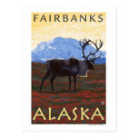 Karibu-Szene - Fairbanks, Alaska Postkarte