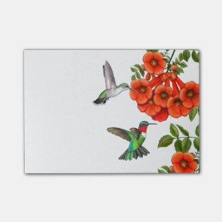 Karminrote Throated Kolibri-Post-Itanmerkungen Post-it Klebezettel