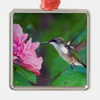 Karminrote Throated Kolibri-Verzierung Silbernes Ornament