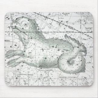 Karte der Konstellations-Platte XXIII Mousepad