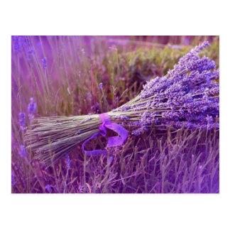 Karten Post- Lavendelstrauß