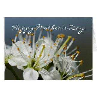 Karten-wilde Weißdorn-Blume der Mutter Tages- Karte