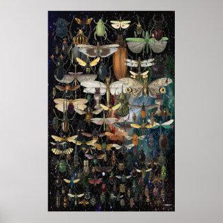 Kaskade der Insekten und der Schmetterlinge Poster