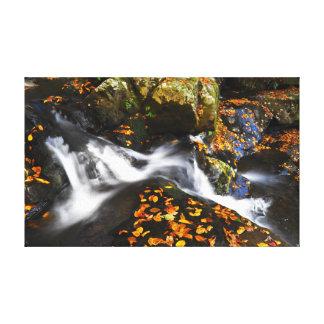 Kaskade im Herbst Leinwanddruck