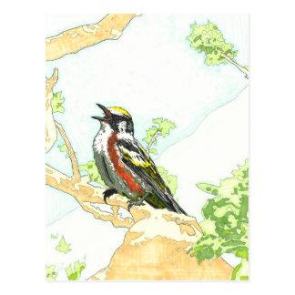 Kastanie versah die Trällerermarkierung mit Postkarte
