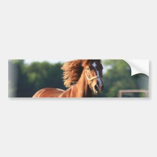 Kastanien-galoppierender PferdeAutoaufkleber Autoaufkleber