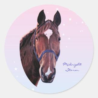Kastanien-Pferd mit weißem Stern Runder Aufkleber