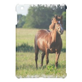 Kastanien-PferdiPad Fall Hüllen Für iPad Mini