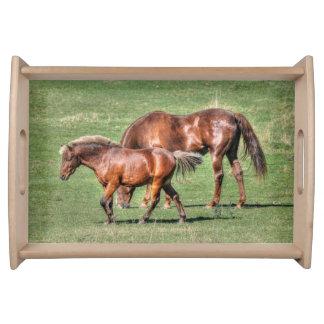 Kastanien-Ranch PFERDc$pferd-liebhaber Natur-Foto Serviertablett