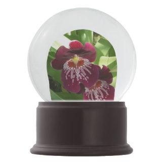Kastanienbraunes elegantes Blumen der Orchideen-II Schneekugel