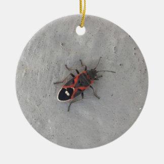 Kasten-Ältest-Käfer Rundes Keramik Ornament