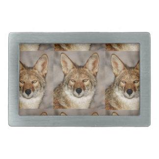 Kästen Kojoten Rechteckige Gürtelschnallen