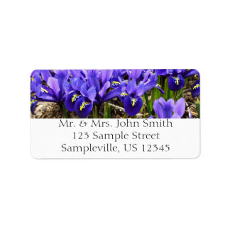 Katherine Hodgkin Irises die blaue lila Blumen Adressaufkleber