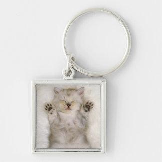 Kätzchen, das auf einem weißen flaumigen Teppich,  Schlüsselanhänger