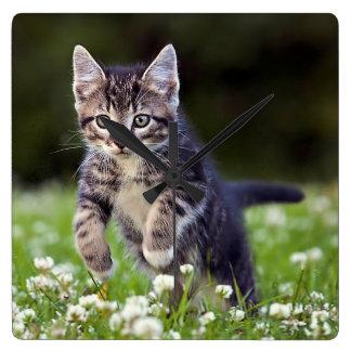 Kätzchen, das durch Klee läuft Quadratische Wanduhr