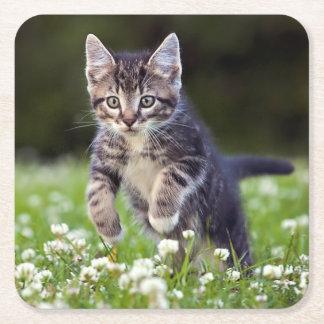 Kätzchen, das durch Klee läuft Rechteckiger Pappuntersetzer