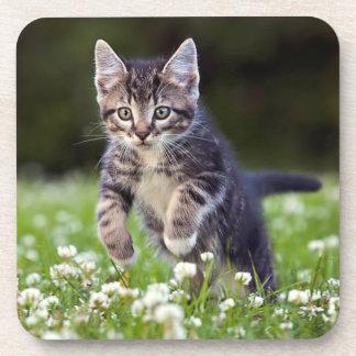 Kätzchen, das durch Klee läuft Untersetzer