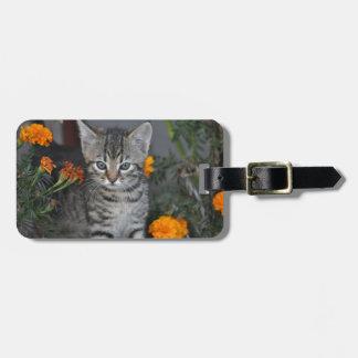 Kätzchen Gepäckanhänger